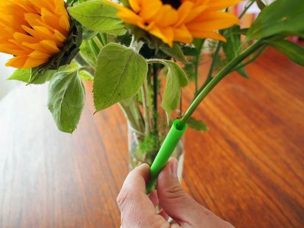 cắm hoa với ống hút