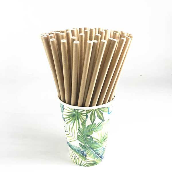 ống hút giấy sinh học